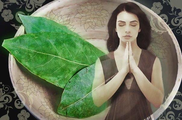 Ритуал на исполнение желания с лавровым листом