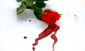 Заговор остановить кровотечение